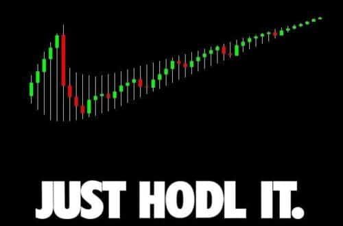 Just Hold it bitcoin cryptomonnaies nike
